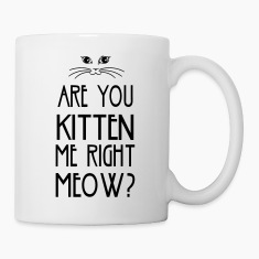 Are You Kitten Me Right Meow Bottles & Mugs