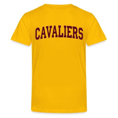 Kids- The Land Commercial Shirt  - Kids' Premium T-Shirt