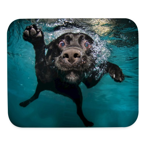 Mouse pad Horizontal - yorkshire terrier,underwaterdogs,underwater puppies,underwater dogs,underwater,stafforshire bull terrier,seth casteel,rottweiler,puppies,pitbull,pit bull terrier,littlefriendsphoto,labrador retriever,dogs underwater,dogs,dog,dachshund,boston terrier,black labrador retriever,black lab
