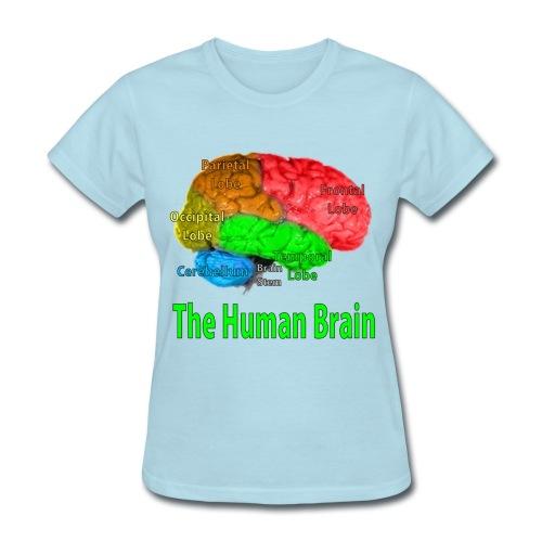 The Human Brain - Women's T-Shirt