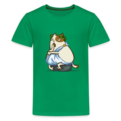 Friday Cat №12 - Kids' Premium T-Shirt