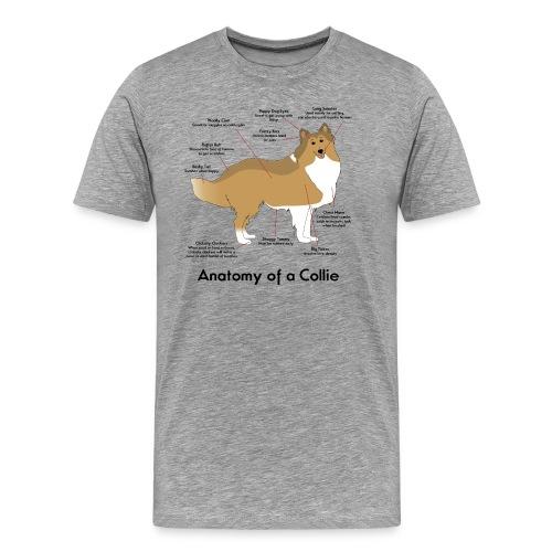 Anatomy of a Collie - Mens Big & Tall T-shirt - Men's Premium T-Shirt