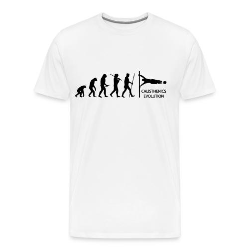 Evolution Flag - Men's Premium T-Shirt