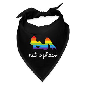 not a phase rainbow pride