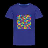 Baby & Toddler Shirts ~ Toddler Premium T-Shirt ~ Rainbow Pi toddler shirt