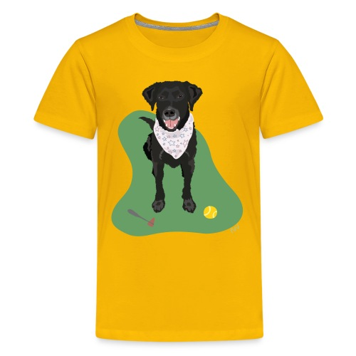 Kids' Tee | Black Lab Ball Love - Kids' Premium T-Shirt