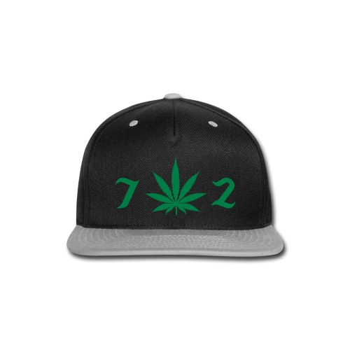 702 - Snap-back Baseball Cap
