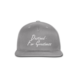 D.F.G Grey Snapback  - Snap-back Baseball Cap