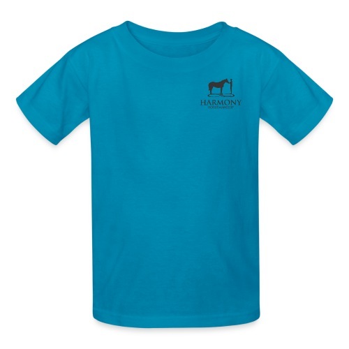 Kids T-Shirt with SMALL grey logo on front & slogan on back - Kids' T-Shirt