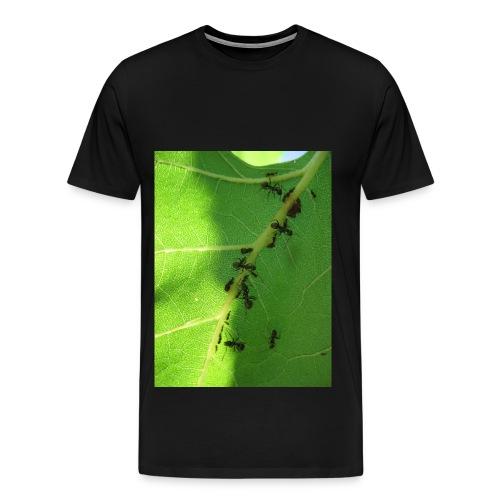 Ants on a leaf - Men's Premium T-Shirt