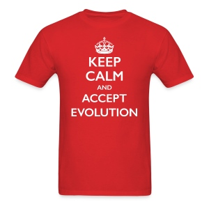 Keep Calm Accept Evolution - Men's T-Shirt