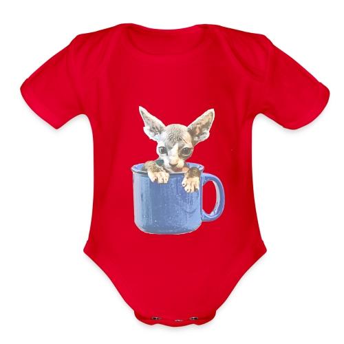 Cute kitty 2 - Organic Short Sleeve Baby Bodysuit