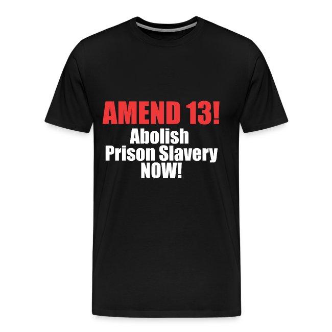 Amend 13 T-shirt