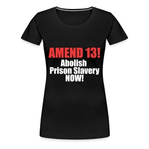 Amend 13 Fitted T-shirt - Women's Premium T-Shirt