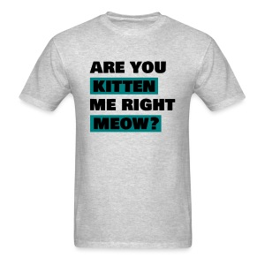 are you kitten me right meow mens - Men's T-Shirt