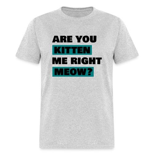 are you kitten me right meow mens - Men's T-Shirt
