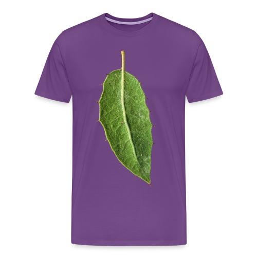 Oak Leaf - Men's Premium T-Shirt
