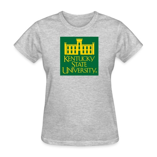 Women's Grey Washington DC Alumni Chapter T-Shirt - Women's T-Shirt