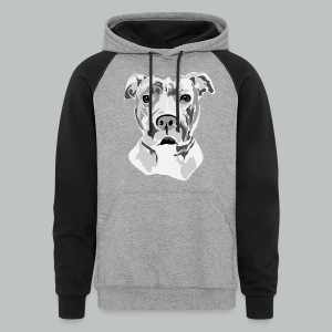 Pitbull - Men's - Colorblock Hoodie