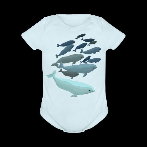 Beluga Whale Bodysuit Baby Beluga One-piece - Organic Short Sleeve Baby Bodysuit