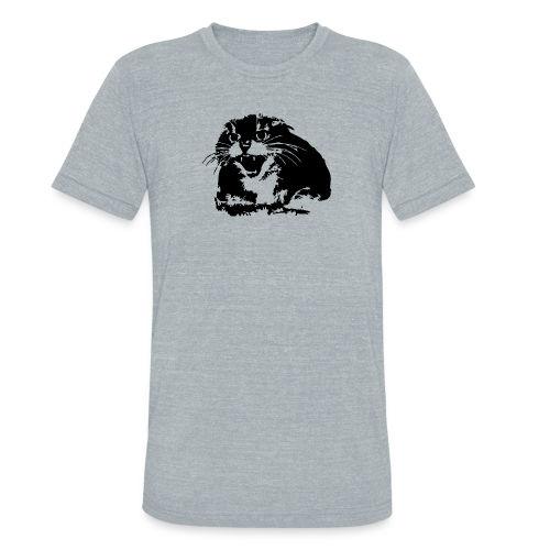 Hissing Cat Triblend Tee - Unisex Tri-Blend T-Shirt by American Apparel