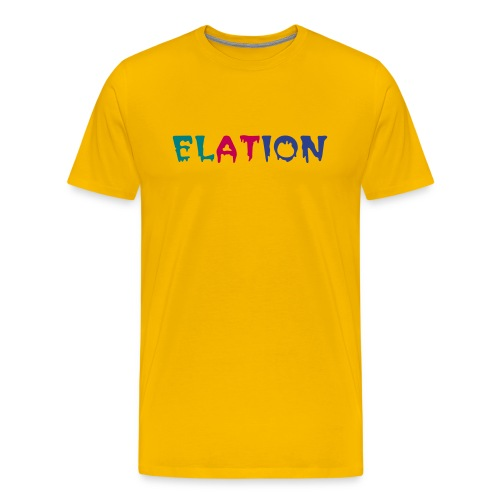 ELATION MULTI CLR T-SHIRT - Men's Premium T-Shirt
