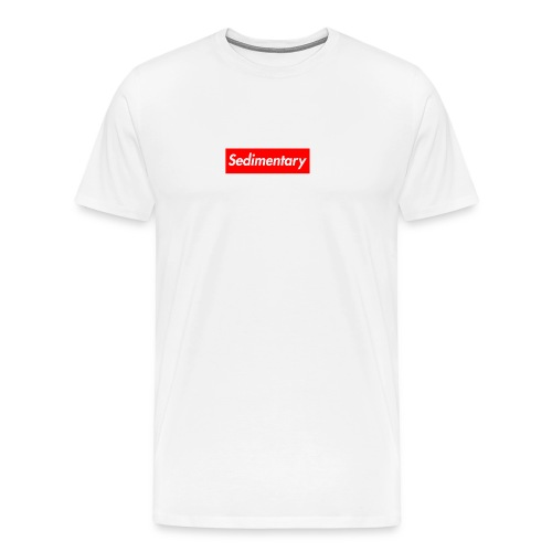 Men's Sedimentary T-Shirt - Men's Premium T-Shirt