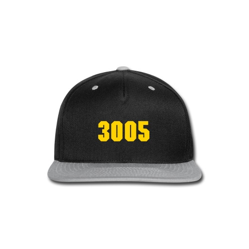 3005 Snapback - Snap-back Baseball Cap