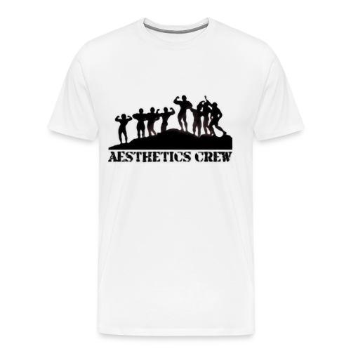 Aesthetics Crew Tee - Men's Premium T-Shirt