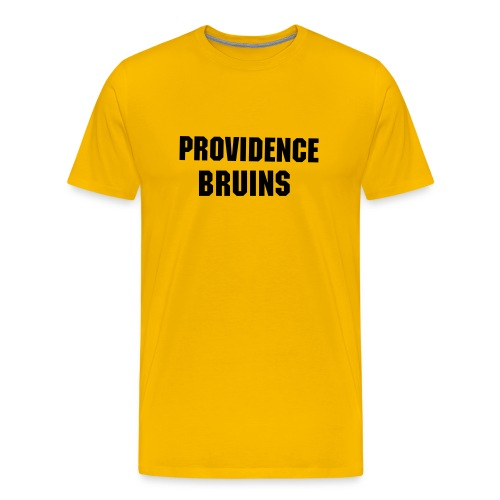 Providence Bruins Alternate - Men's Premium T-Shirt