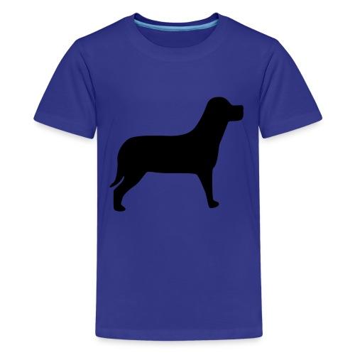Boys T-Shirt - Kids' Premium T-Shirt