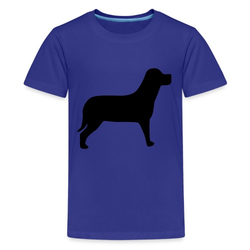 Boys T-Shirt - Kids' Premium T-Shirt