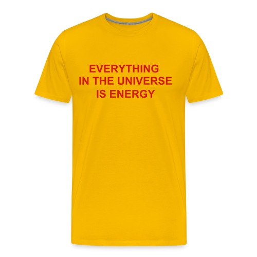 EVERYTHING IN THE UNIVERSE IS ENERGY - Men's Premium T-Shirt