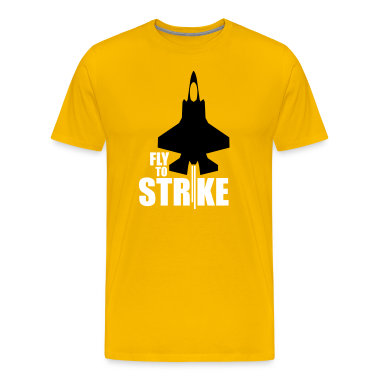 Fly to Strike