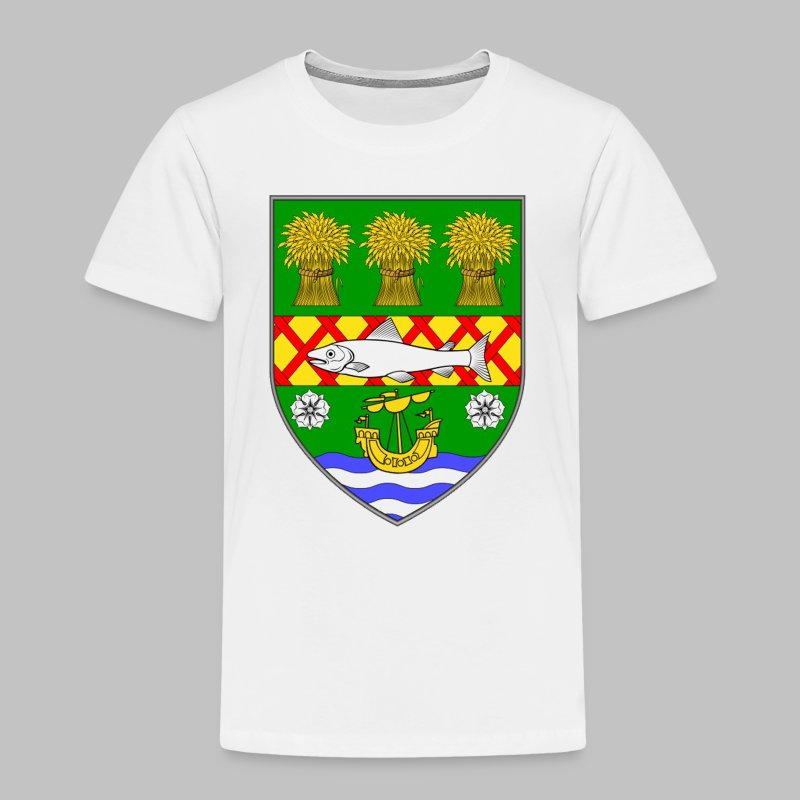County Down - Toddler Premium T-Shirt