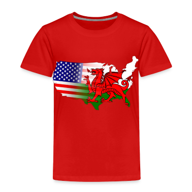 Welsh American Flag Toddler Shirts