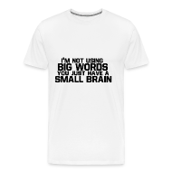 T-Shirts ~ Men's Premium T-Shirt ~ Big Words