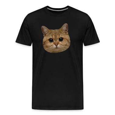 Stare Cat the Shirt