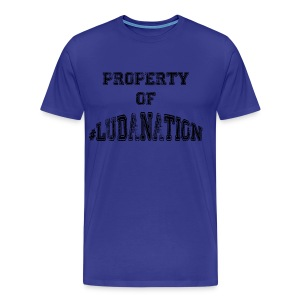 Property of #Ludanation - Men's Premium T-Shirt