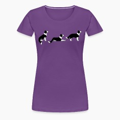 sit down stay border collie p Women's T-Shirts
