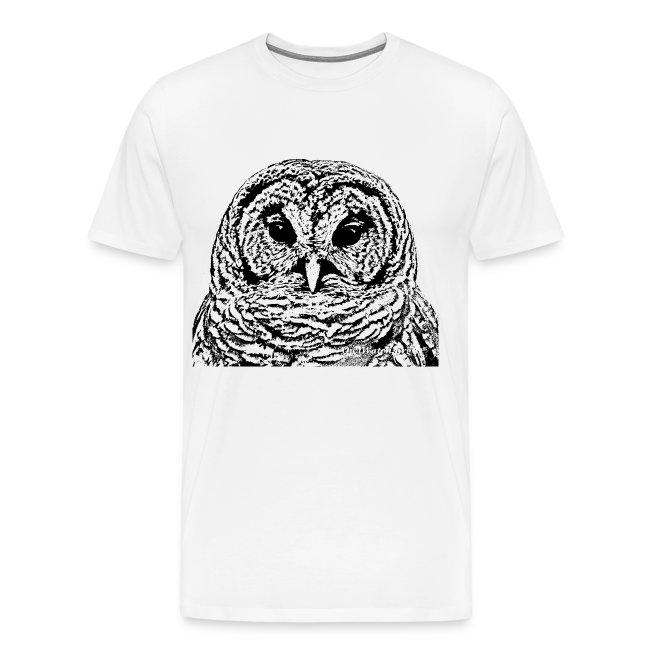 Mr Barred Owl Dec 2013