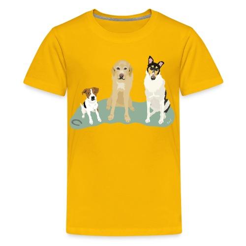Kids' Tee | Twelve Legs and a Horse Shoe - Kids' Premium T-Shirt