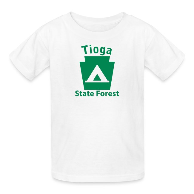 Tioga State Forest Keystone Camp