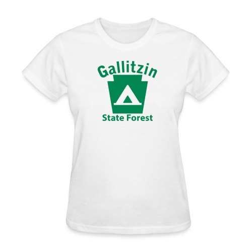 Gallitzin State Forest Keystone Camp - Women's T-Shirt