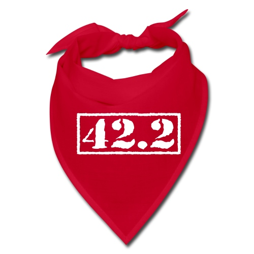Top Secret 42.2 - Bandana