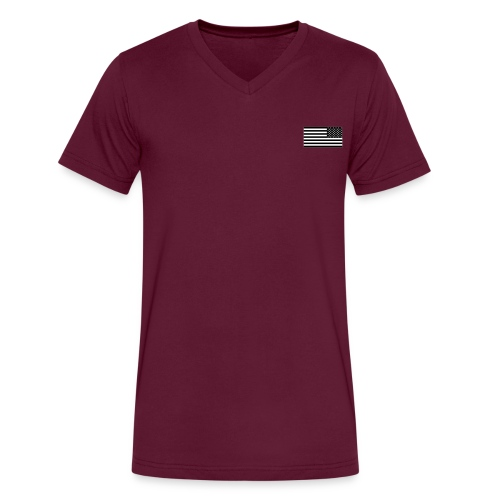 V-Neck Flag - Men's V-Neck T-Shirt by Canvas