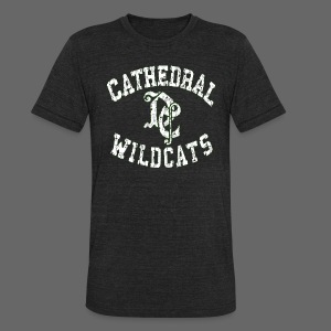 Detroit Cathedral - Unisex Tri-Blend T-Shirt by American Apparel
