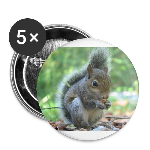 Squirel - Large Buttons