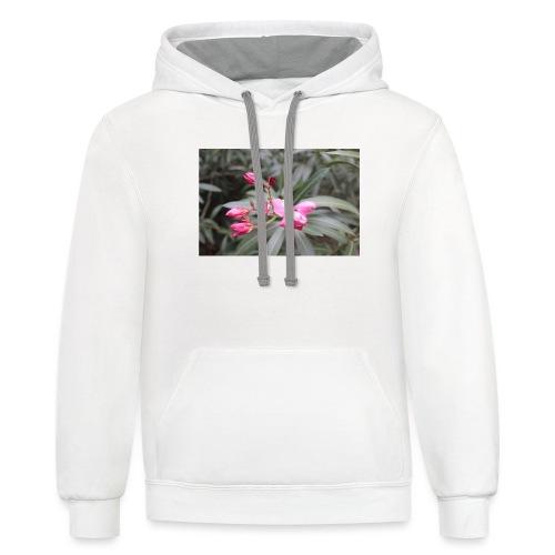 Pink desert - Contrast Hoodie