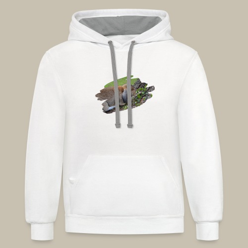 French Lop Brush Stroke - Unisex Contrast Hoodie